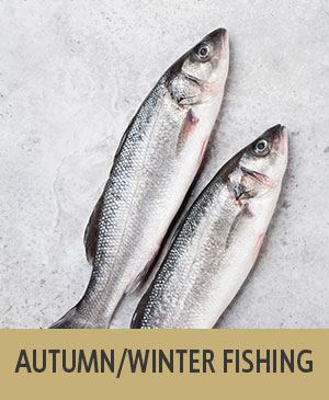autumn/winter fishing trips